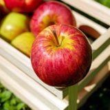 apple-1589869_960_720